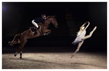 Horses and Ballet